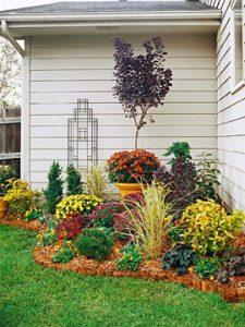 garden corner yard