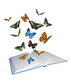 butterflies flying from book