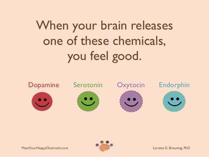 meet-your-happy-chemicals-dopamine-serot