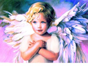 angel pink 72small