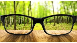 eyeglasses nature