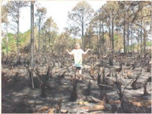 The arson fires stopped at our property